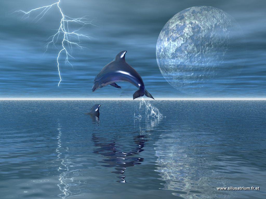 36a268c821e delfinai fantaziju planetoje