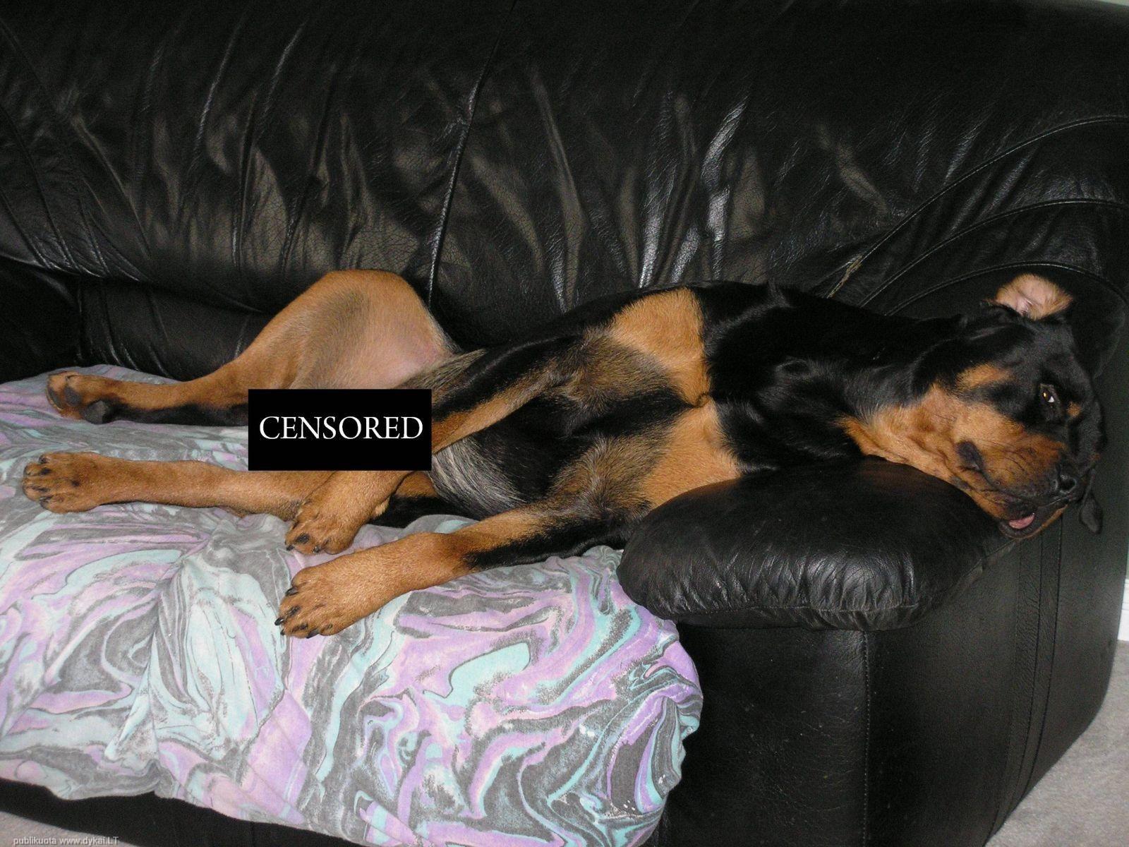 Самые большие censored 6 фотография