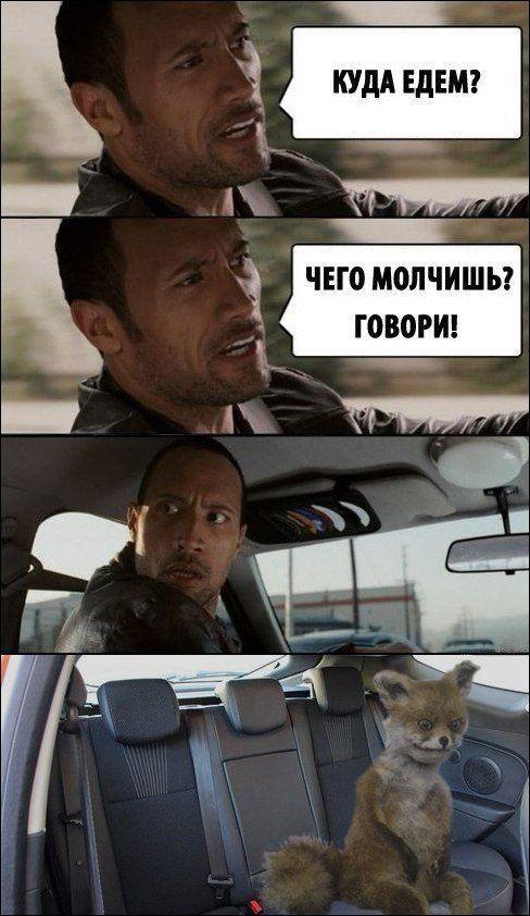 idi-v-zhopu-film