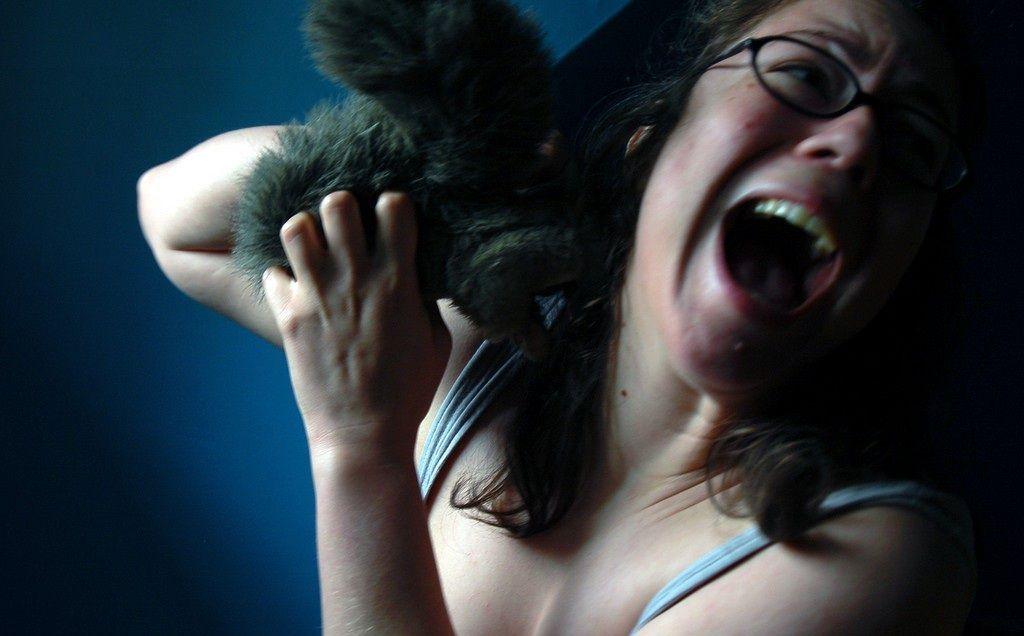 Пожалуйста, оцените новость Девушки и животные (35 фото) вверху