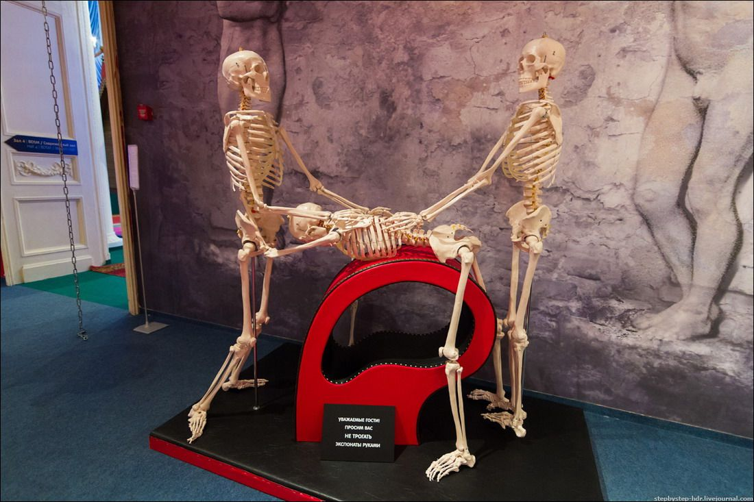 Музей порно смотреть онлайн