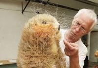 Rinkiniai: Unikalios gyvūnų skulptūros iš drožlių