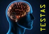 TESTAS: Kiek tavo smegenims metų