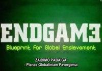 Dokumentinis filmas: Žaidimo pabaiga (Endgame)