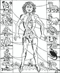 ĮDOMYBĖS: Kaip įtikti kiekvienam zodiako ženklui