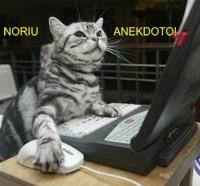 tekstai: Noriu Anekdoto!