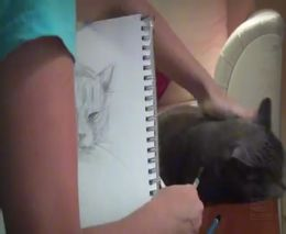 2. Mokinamės piešti katiną