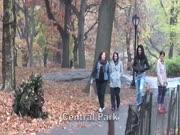 1. Gyvas krūmas parke (slapta kamera)
