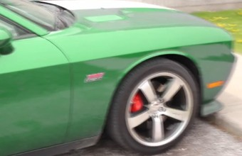 2. Automobilis - chameleonas
